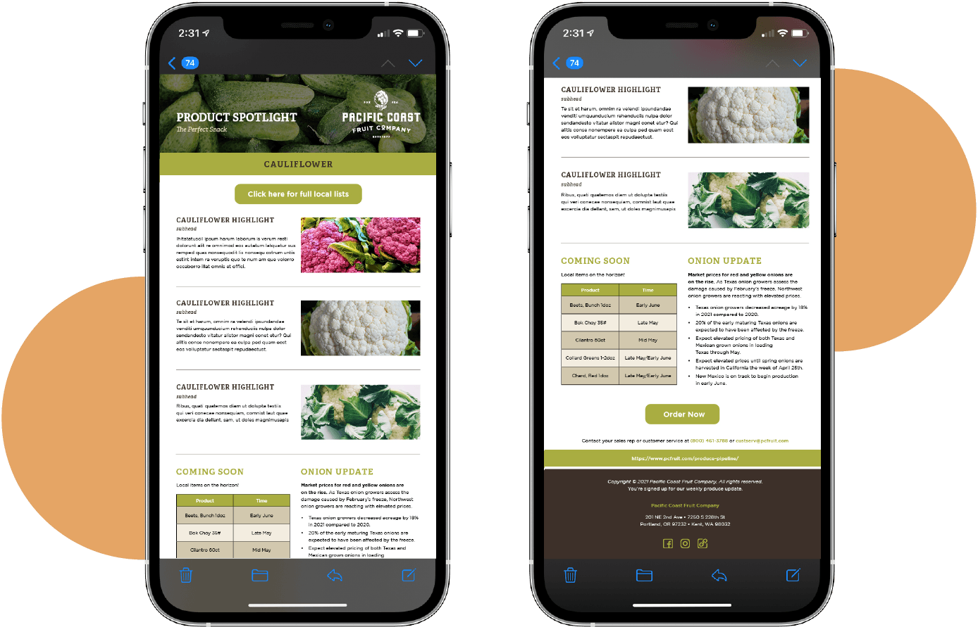 phone-mock-cms-services-close-high-res